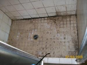 moldy-shower-tile before-1